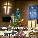 There is a lot happening this Christmas season at Harmony.  The annual decoratio…